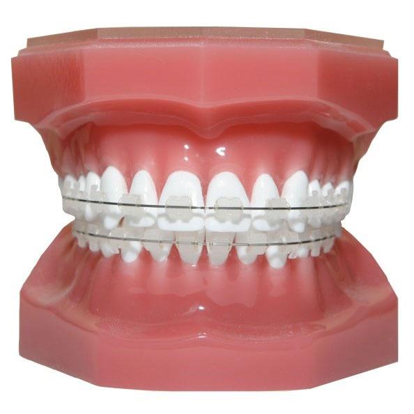 dental-clinic-near-me-10